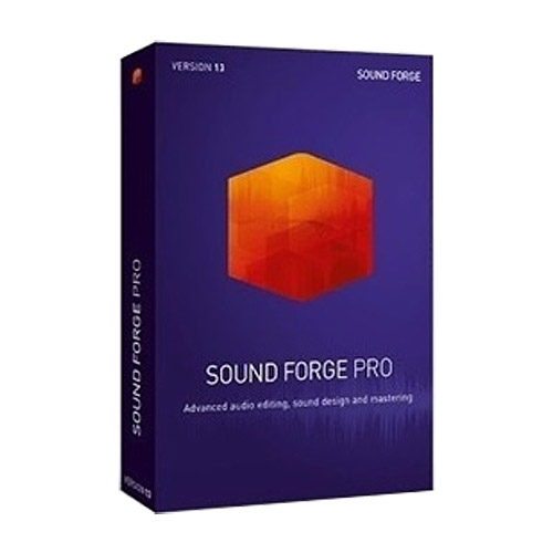 MAGIX Sound Forge Pro 13[교육용 라이센스(ESD)]